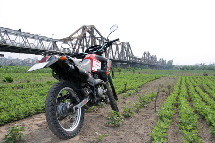Offroad Vietnam Motorbike Sale - Honda Degree XL250 For Sale In Hanoi. Honda Degree XL250 250cc