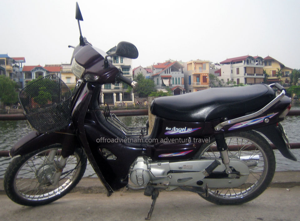 Offroad Vietnam Scooter Rental - Other 100cc Series Scooter Rentals. SYM Angel 90-100cc Brown, Blue, White, Drum brake
