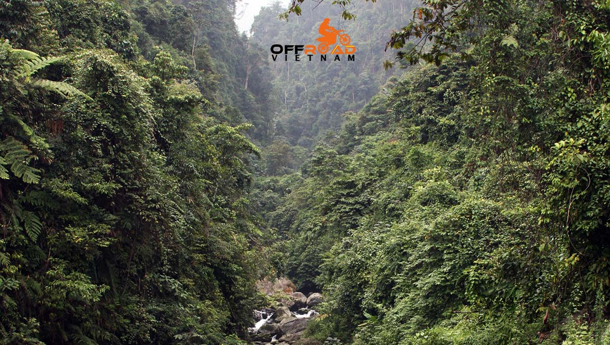 Offroad Vietnam Motorbike Adventures - Classic One Day Tour to Cuc Phuong National Park.