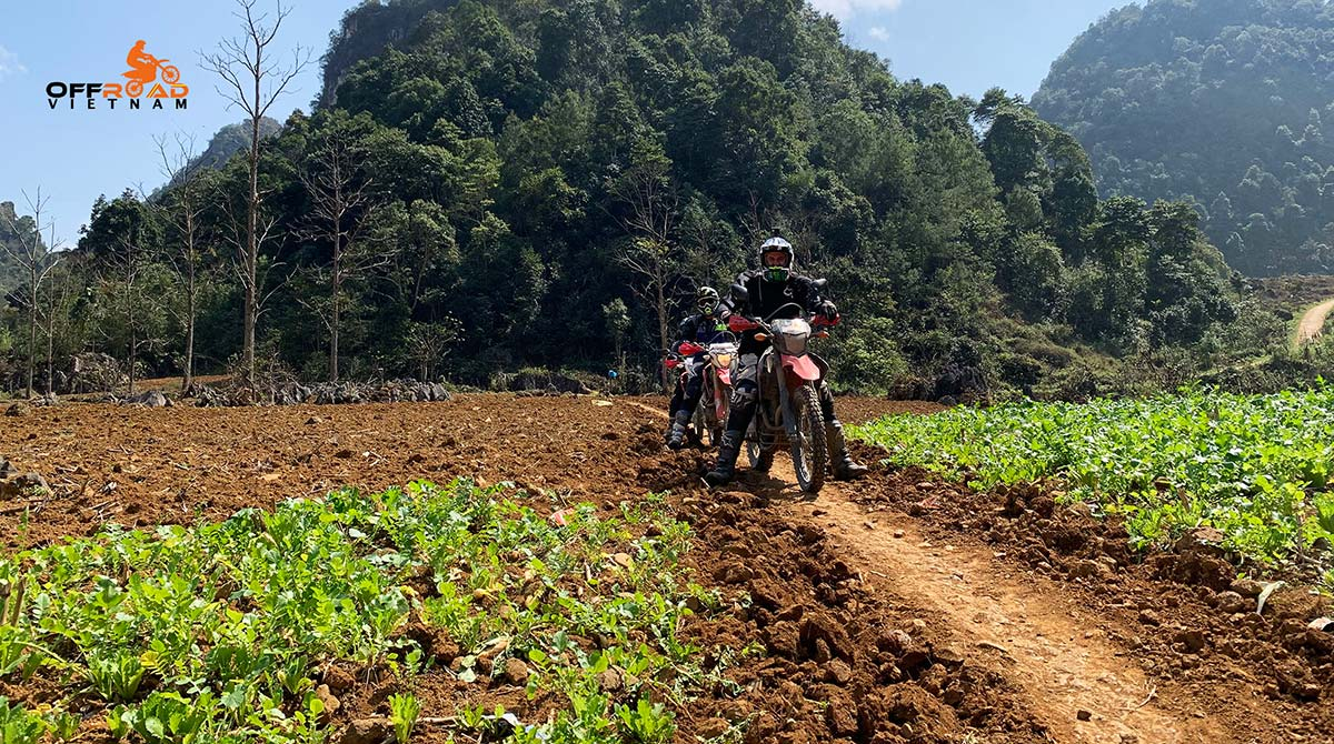 Offroad Vietnam Motorbike Adventures - Exotic North-Centre 3 days motorbike tour to Vu Linh and Na Khan.
