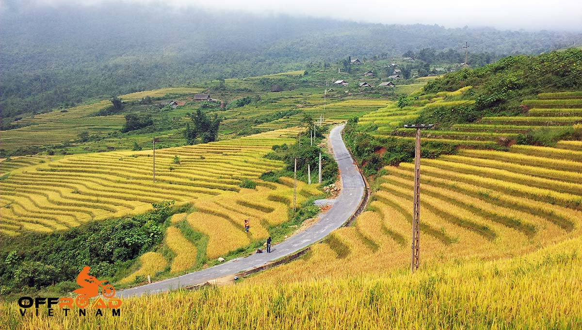 Long 5 Days Roof Roads Motorbike Riding Adventure In Vietnam Via rice fields
