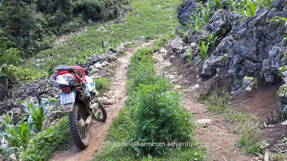 Offroad Vietnam Motorbike Adventures - Exciting Short 3 Days Delta Motorbiking To Mai Chau & Ninh Binh