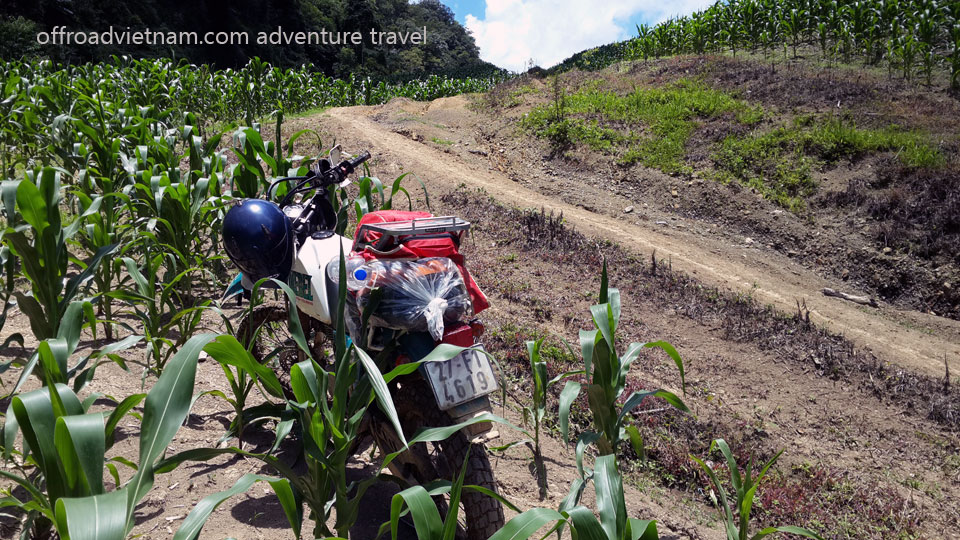Low Lands Of red River Delta & Mai Chau Motorcycle Ride In 3 Days. Offroad Vietnam Motorbike Adventures - Low Lands Delta & Mai Chau 3 Days