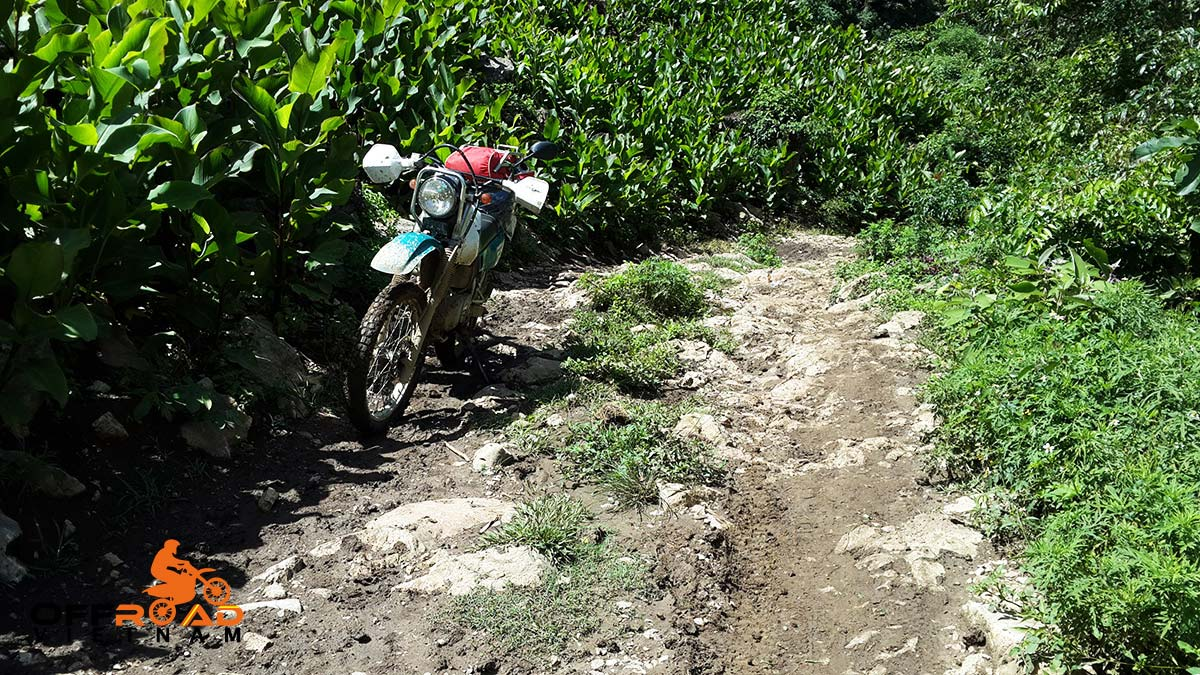Offroad Vietnam Motorbike Adventures - Middle Roads & Halong Bay 6 Days By Bike via an of-road track.