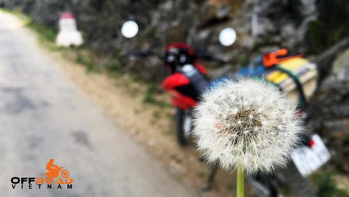 Offroad Vietnam Motorbike Adventures - BikePoint Australia press release. Road to Lang Son.