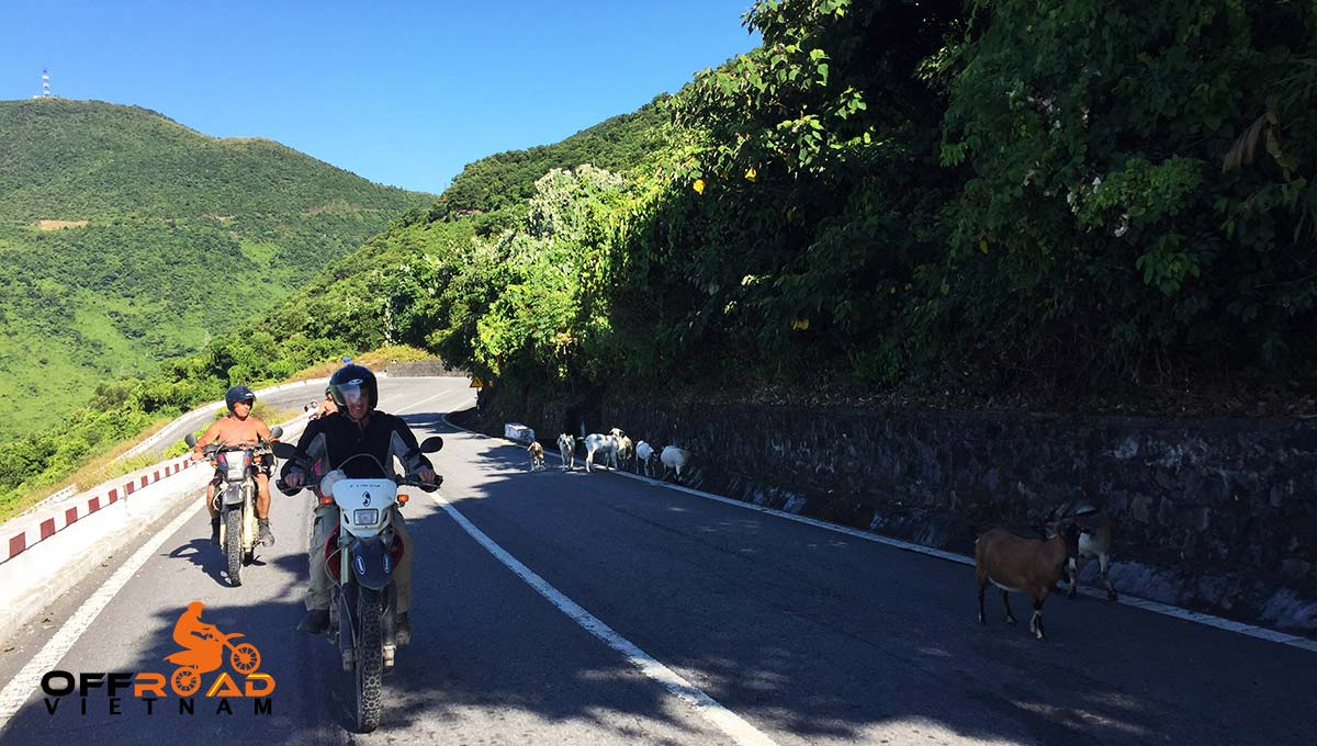 Offroad Vietnam Motorbike Adventures - Mr Terry Middleton's Reviews Of Ho Chi Minh Trail Motorbike Tour (UK), Ho Chi Minh trail motorcycle tour reviews in Vietnam, June 2015