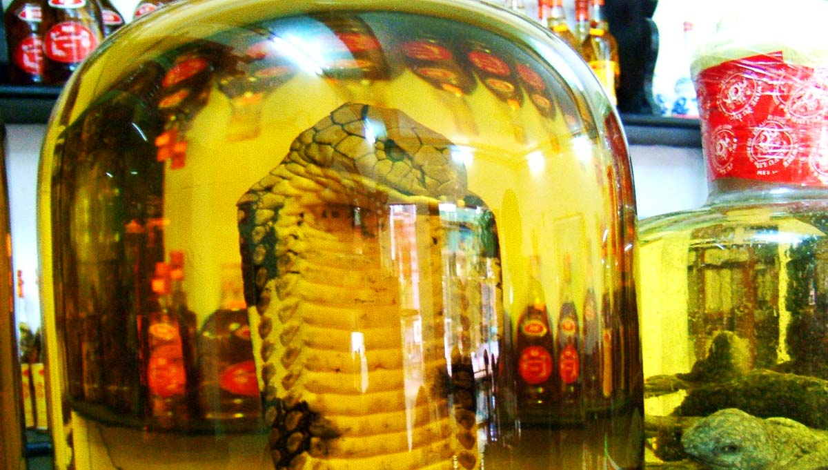 Offroad Vietnam Motorbike Adventures - Minsking, Uncle Ho and Snake Wine. Ho Chi Minh statue..