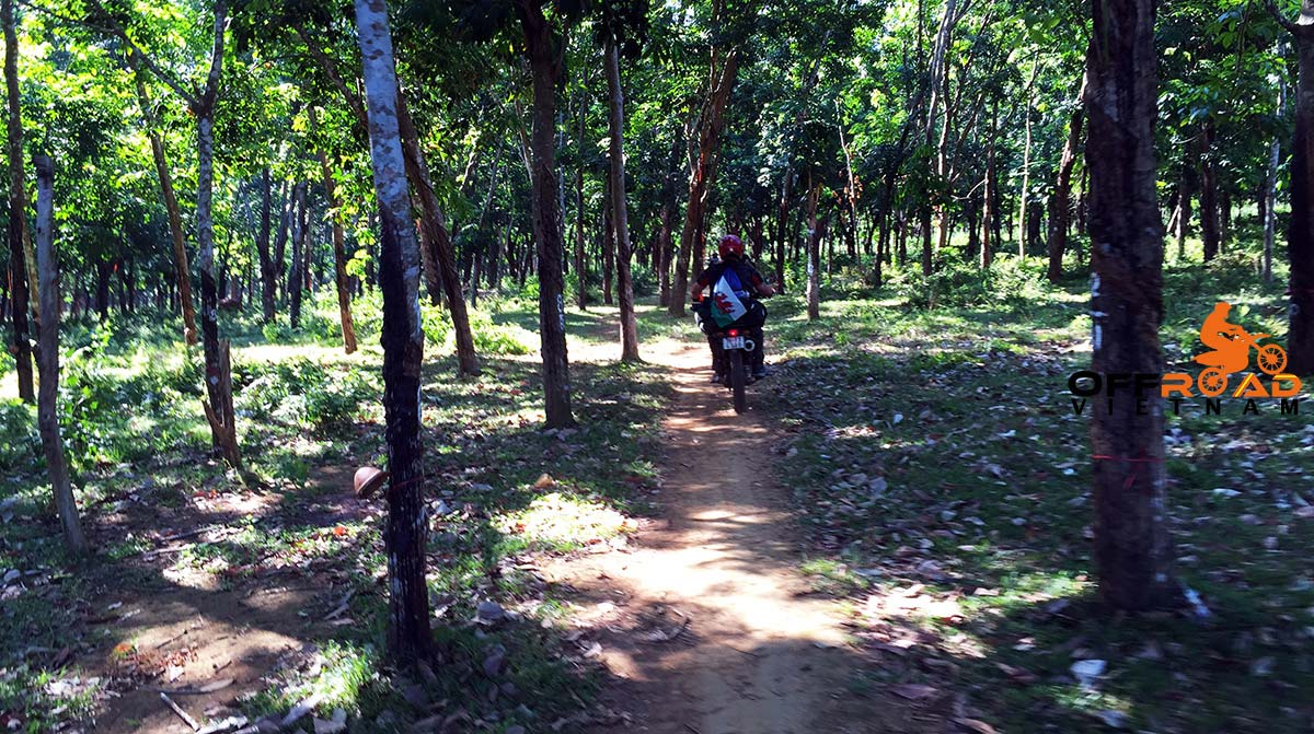 Offroad Vietnam Motorbike Adventures - Lam Dong Province, Central Highlands