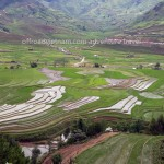 Terrace rice fields on a Vietnam motorbike tour